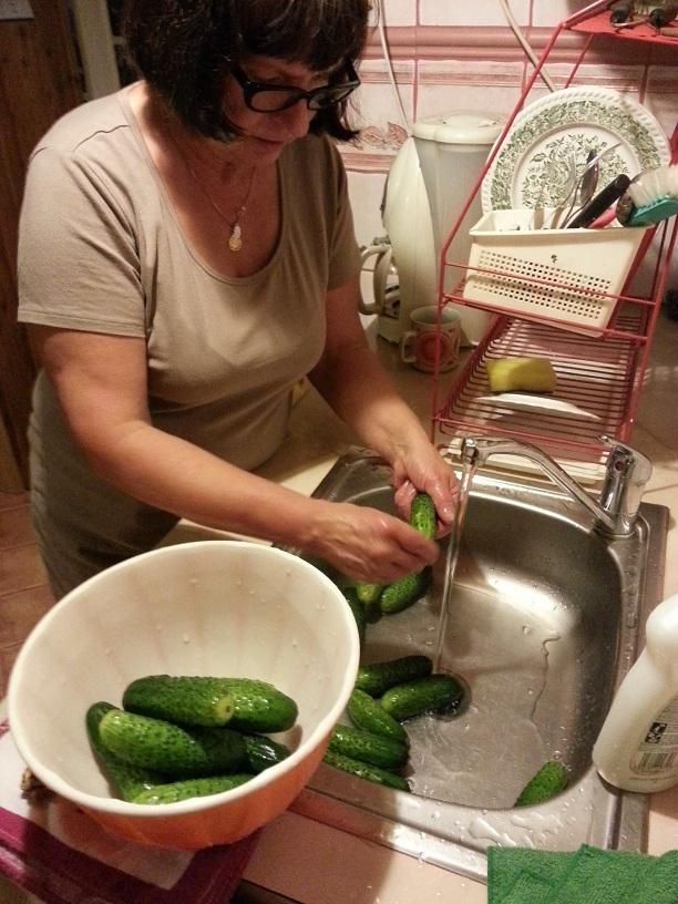 Vaske agurker