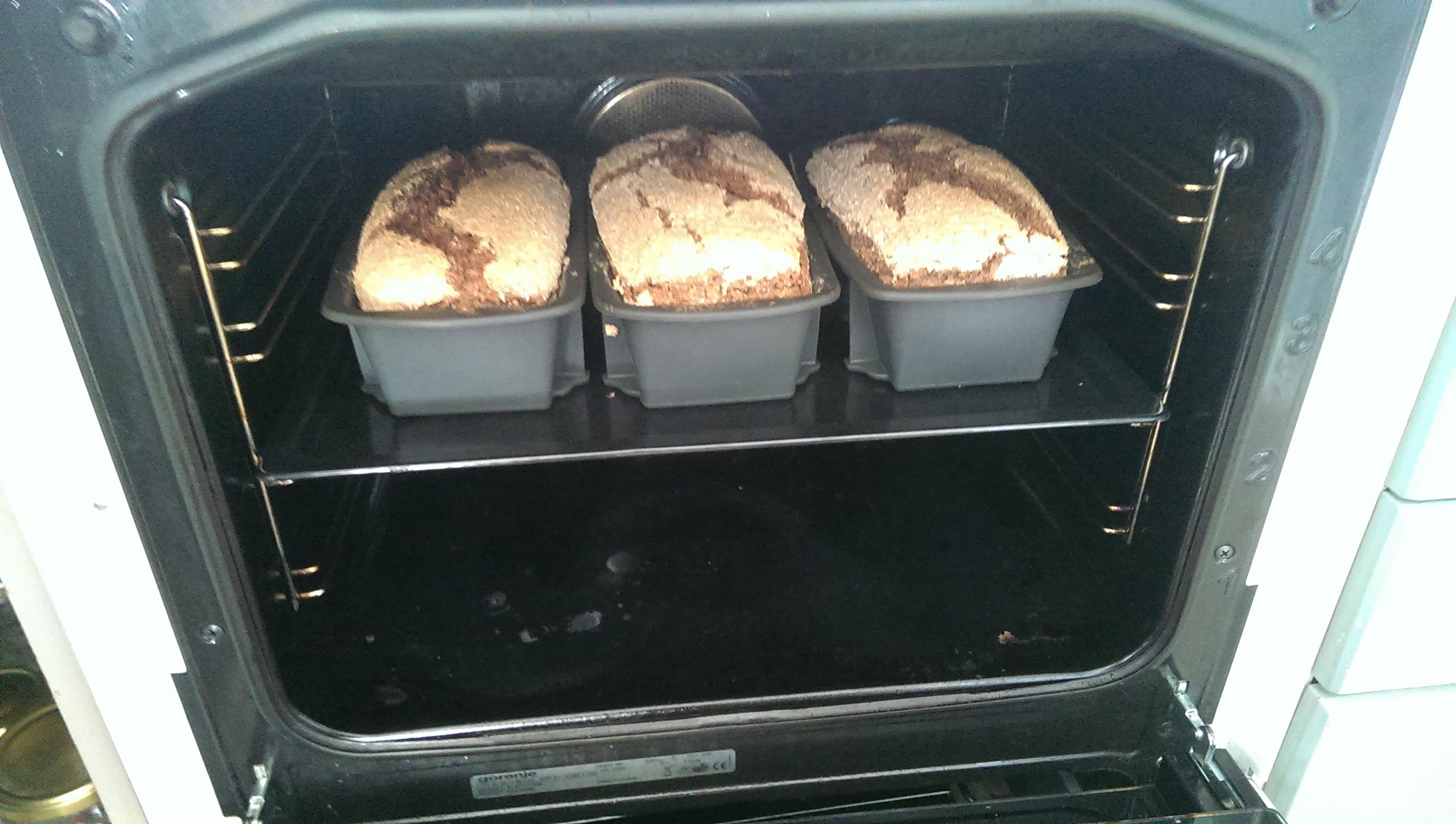 Rugbrød i stekeovnen