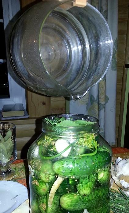 helle saltvann på agurker
